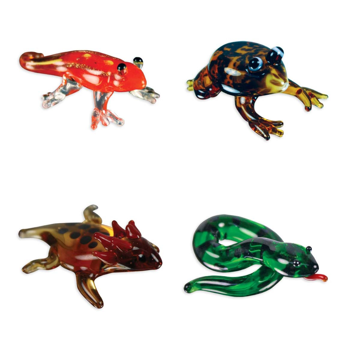 Looking Glass Torch - Reptiles - Gecko, Frog, Toad & Anaconda (4-Pack) - Off The Wall Toys and Gifts