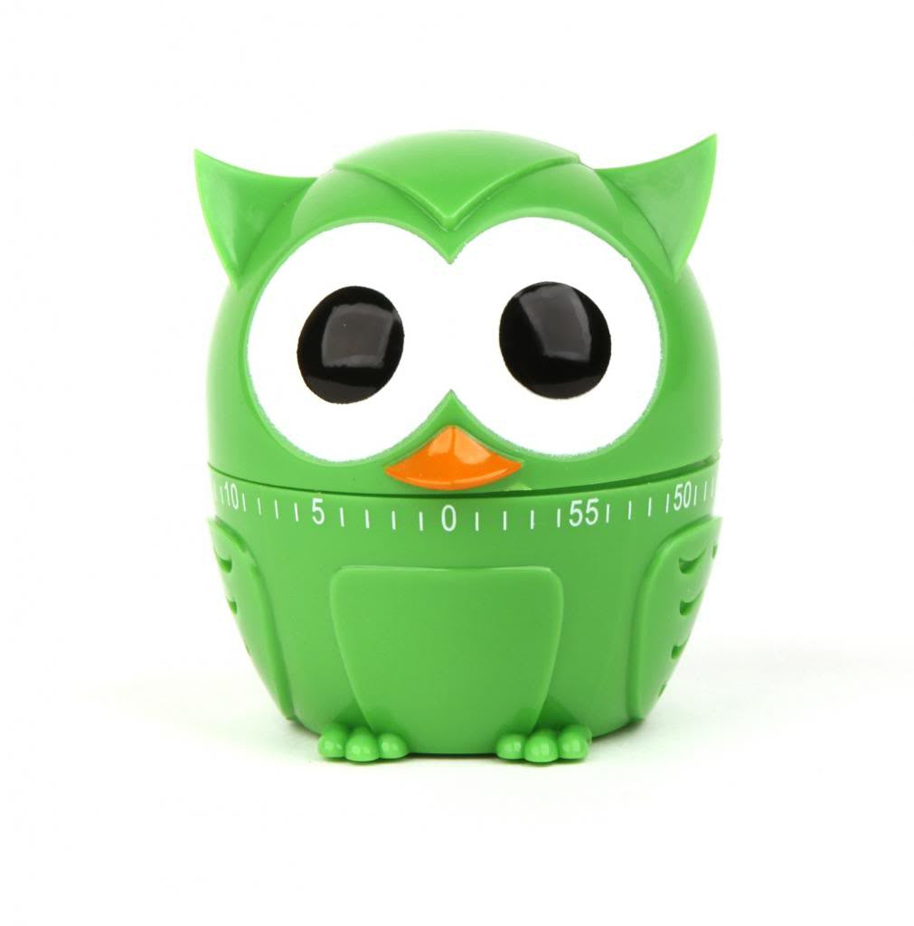 Owlet 60 Minute Kitchen Timer - Green - Off The Wall Toys and Gifts