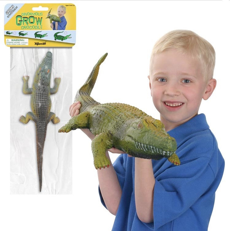 Ginormous Growing Crocodile Grow from 12 inches to 32 inches!