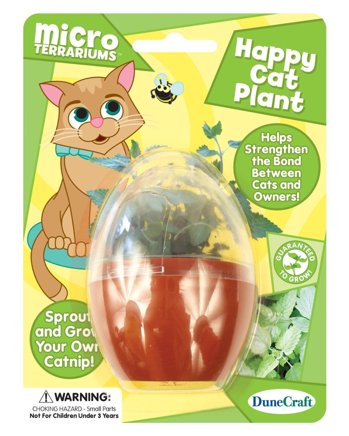 Happy Cat Plant Micro Terrarium w/Seeds - Off The Wall Toys and Gifts