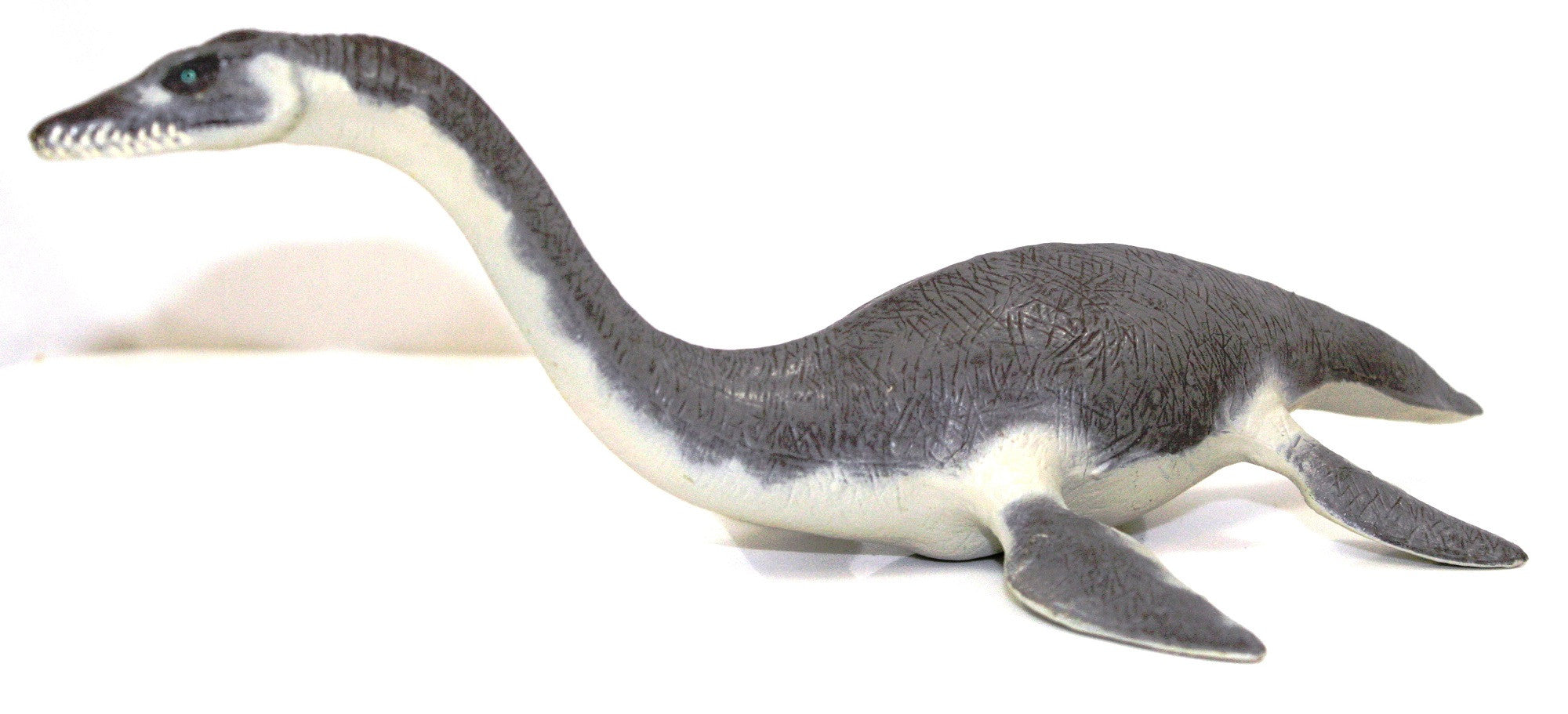 "9.5"" Long Plesiosaurus - Realistic Dinosaur Replica, by Papo - Off The Wall Toys and Gifts"