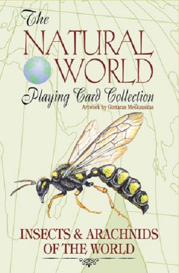 INSECTS of the Natural World Art Playing Cards - Off The Wall Toys and Gifts