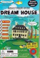 Grow Your Own Dream House: Collectible Magic Growing Thing - Off The Wall Toys and Gifts