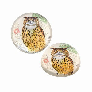 Glass Paperweight; Horned Owl Print - Off The Wall Toys and Gifts