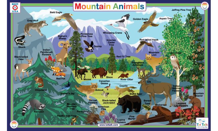 Mountain Animals - Activity Placemat by Tot Talk - Off The Wall Toys and Gifts