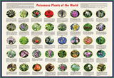 "Poisonous Plants of the World - Laminated Poster 38x26"" - Off The Wall Toys and Gifts"