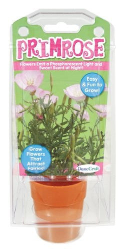 Primrose Capsule Terrarium Kit w/Seeds - Off The Wall Toys and Gifts