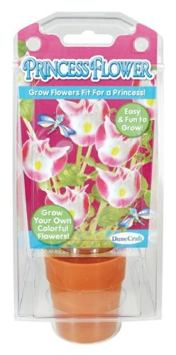 Princess Flower Capsule Terrarium Kit w/Seeds - Off The Wall Toys and Gifts