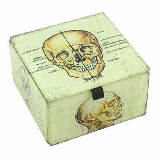 Glass Box with Skull Illustrations - Off The Wall Toys and Gifts