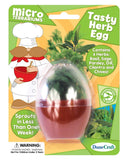 Tasty Herb Egg Micro Terrarium w/Seeds - Off The Wall Toys and Gifts