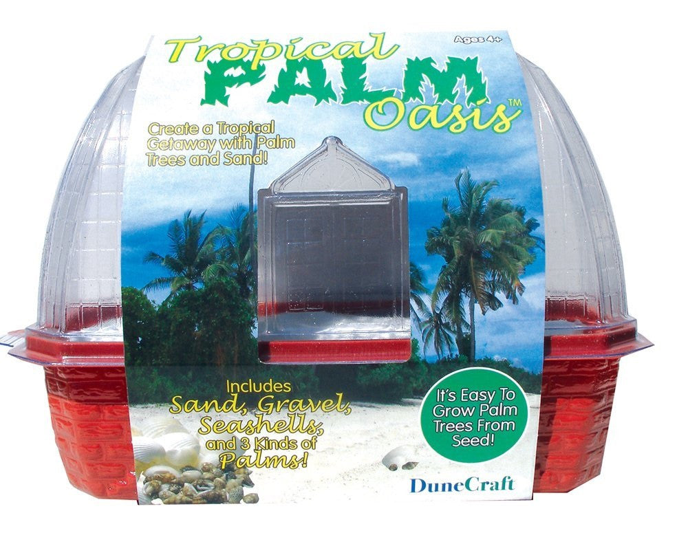 Tropical Palm Oasis Windowsill Greenhouse Kit w/Seeds - Off The Wall Toys and Gifts