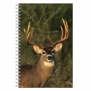 Buck Deer Journal Notebook