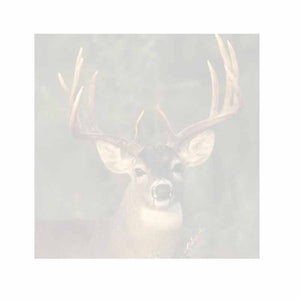 Buck Deer Sticky Notes - Set of 3 - Blank or Personalized