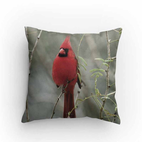 Red Cardinal Bird Pillow
