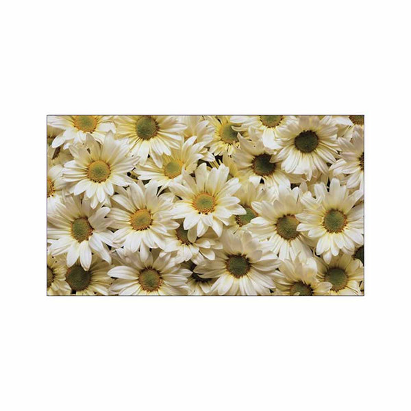 Daisies Place Cards - Flat Style