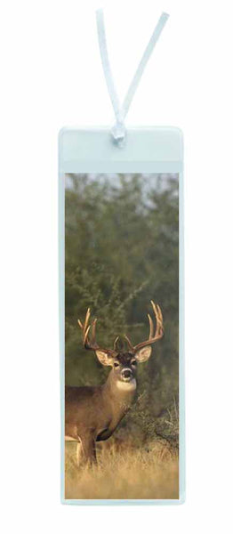 Buck Deer Bookmark