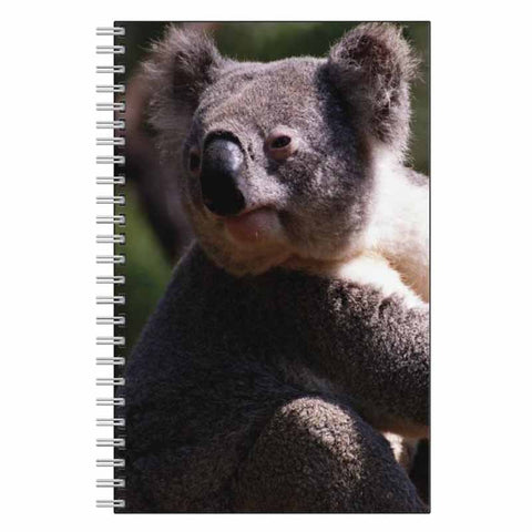 Koala Bear Journal Notebook