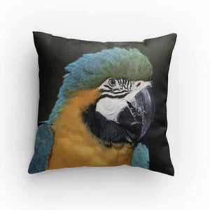 Macaw Parrot Pillow