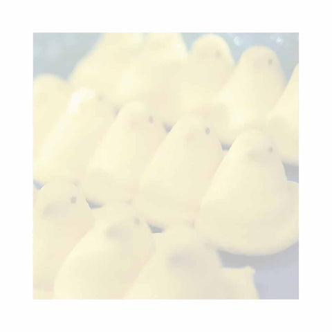 Marshmellow Chicks Sticky Notes