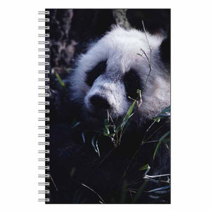 Panda Bear Journal Notebook