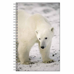 Polar Bear Journal Notebook