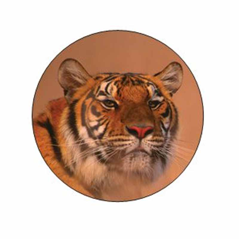 Siberian Tiger Stickers
