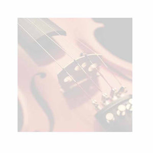 Violin Sticky Notes - Set of 3 - Blank or Personalized