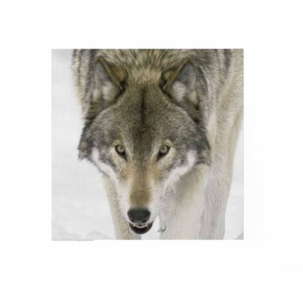 Wolf Face Wall Art Hanging