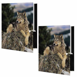 Wolf on Rocks Folder - Set of 2