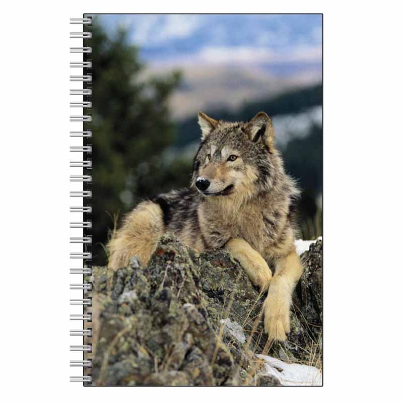 Wolf on Rocks Journal Notebook