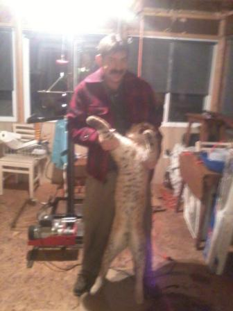 John-Chagnon-nice-northern-michigan-bobcat-lenon-bobcat-nature-call