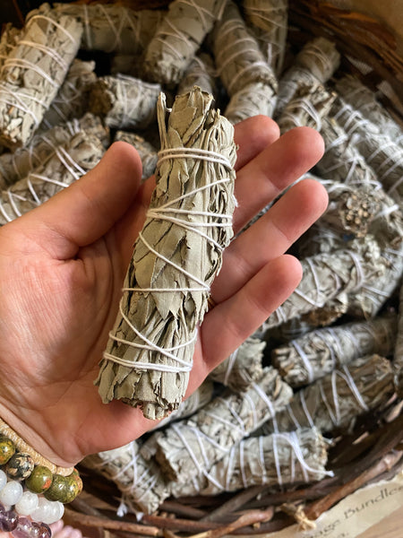 Small White Sage Smudge Stick (1 Bundle)