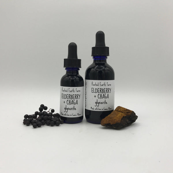 Organic Elderberry and Chaga Tincture