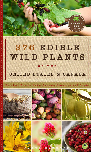 276 Edible Wild Plants of the United States and Canada