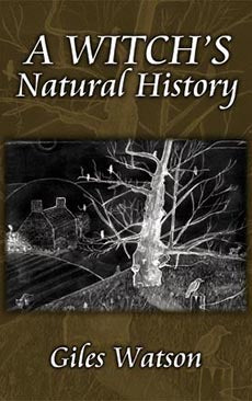A Witch's Natural History