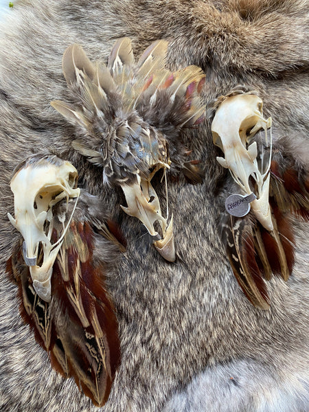 Pheasant Skull Hat Pin with Feathers
