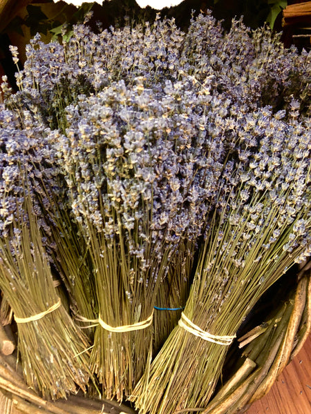 Lavender - Large Bundle