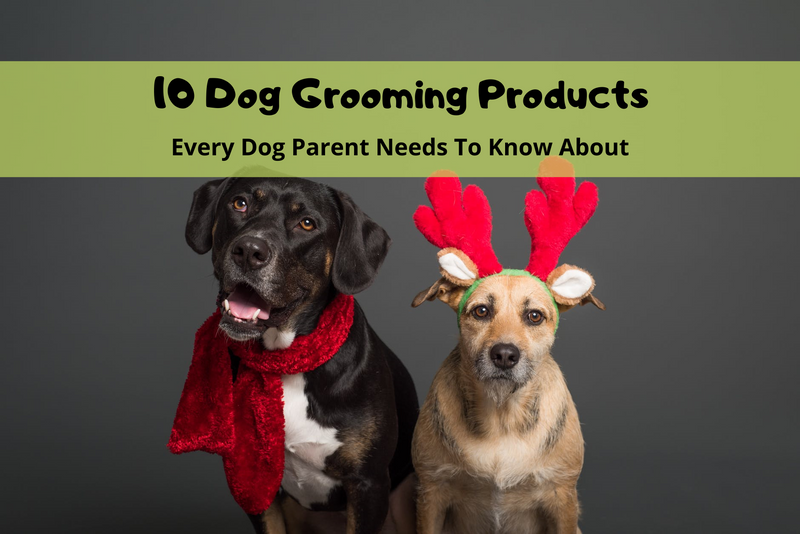 10 Dog Grooming Products