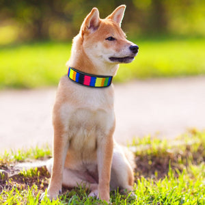 Bonza Cool - Pet Collars (Reflective)