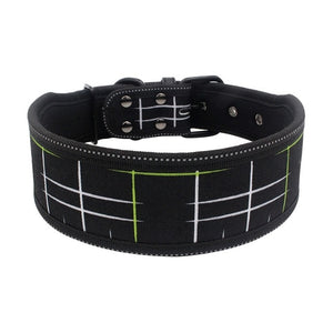 Classic Retro - Pet Collars (USA Warehouse)