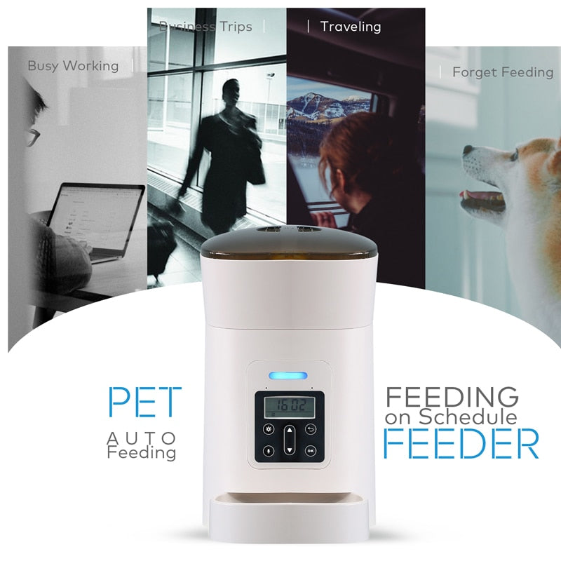 Auto Pet Feeder 4L (USA - DHL Delivery)