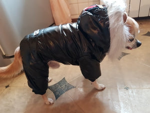 Pet Winter Overcoat (S-XXL)