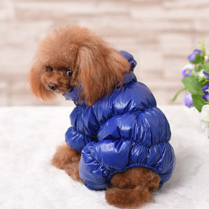 Dazzling Fashion - Pet Coats (S-2XL)