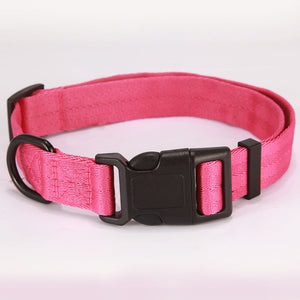 Everyday Pet Collars - Dog (S-XL), Collar, Dreaming Life Store, Miss Molly & Co. - Miss Molly & Co.