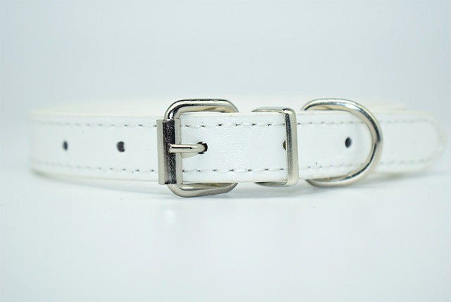 Cool Trending Collars - Pets, Collar, Senristar Store, Miss Molly & Co. - Miss Molly & Co.