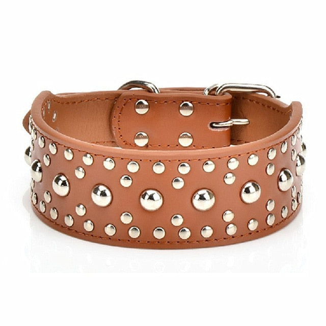 Rich Pooche Collars