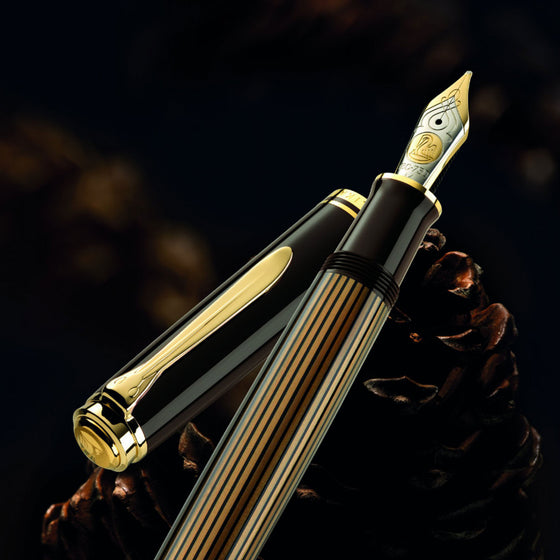 M800 Brown Black gold nib detail