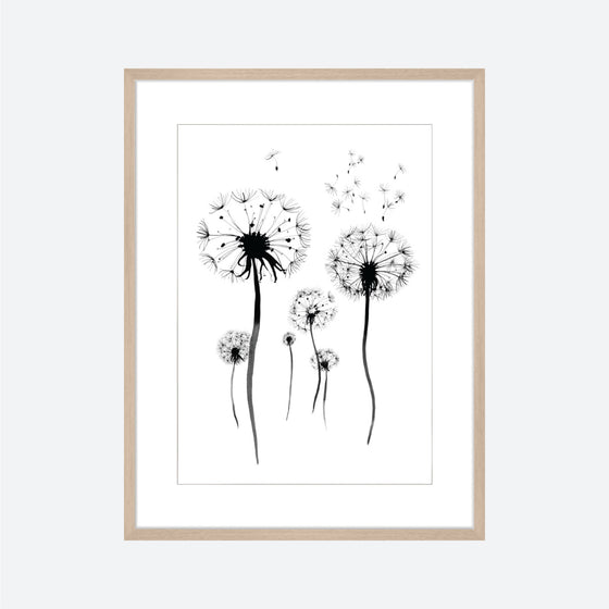 Toril Baekmark - Fine Art Prints - Black Flowers No.6