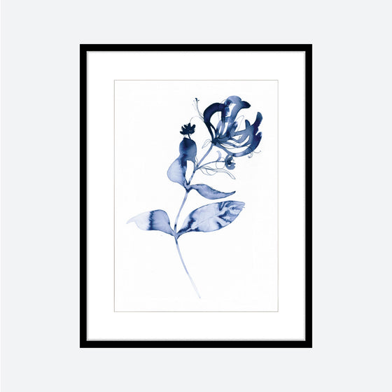 Toril Baekmark - Fine Art Prints - Flower Poster No.67