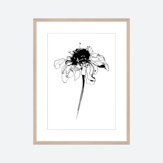 Toril Baekmark - Fine Art Prints - Black Flowers No.1
